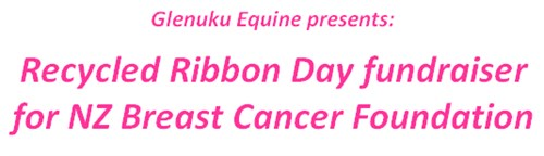 Glenuku Equine's Recycled Ribbon Day