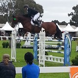 Ross Smith (NZL) & Quite Cassini in the Grand Prix